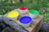 Cobalt, Leaf, Yellow, Red Set of Small Bowls