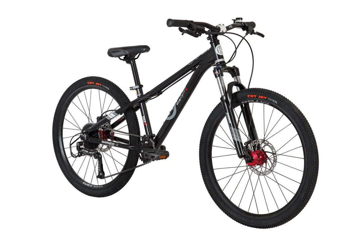 ByK E-540 MTBD 24 inch Kids Mountain Bike
