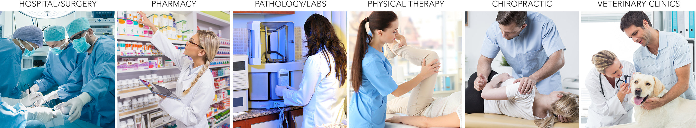 Hospital, Pharmacy, Pathology, Physical Therapy, Chiropractic, Veterinary Clinics