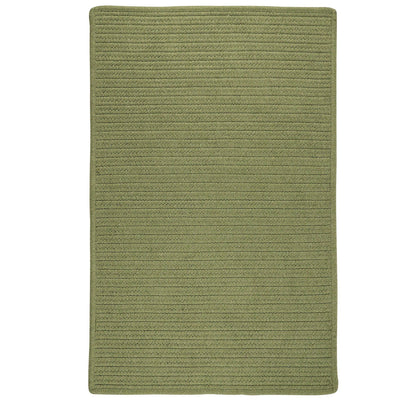 Sunbrella Solid LS07 Basil Braided Rug by Colonial Mills