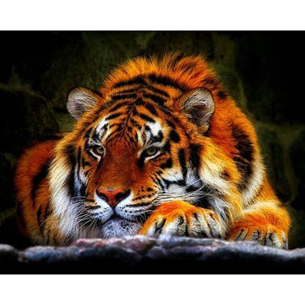 Tiger Vibes - Dreamer Diamond Paint Kit