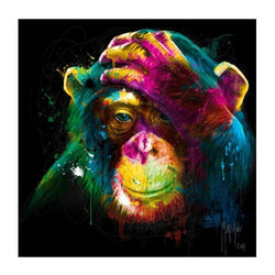 Rainbow Ape - Dreamer Diamond Paint Kit