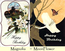 Vintage Floral Birthday Cards  - Emebellished with soft iridescent glitter Free U.S. Shipping - discounted International