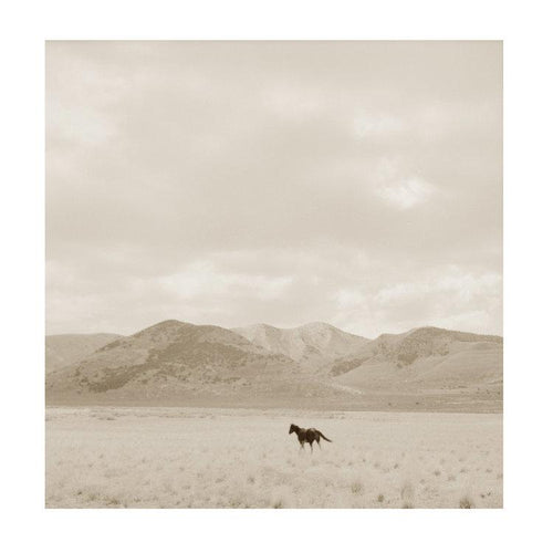 Chris Dunken Landscape with Horse 2 Framed Wall Art with Horse in Field with Mountains