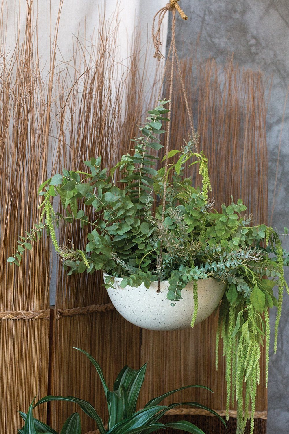 Sabel Ceramic White Hanging Pot - Indoor Bowl Planter with Rope