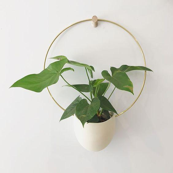 Hanging Wall Planter Indoor - Sienna Brass Hoop Planter