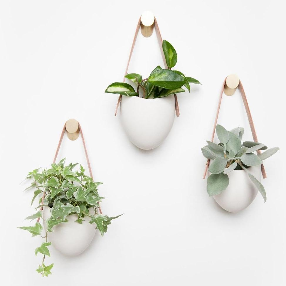 Indoor Hanging Planter Wall - Sienna Set of 3