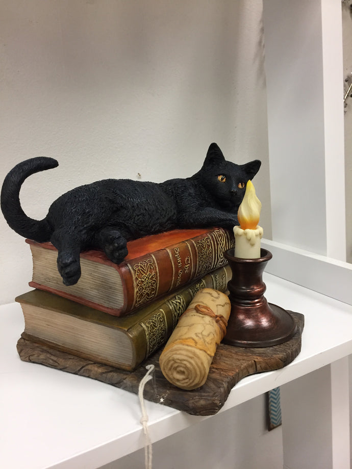 Black Cat On The Book