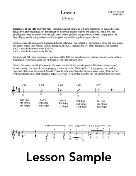 Classical Guitar Repertoire Lessons Grade 5 - Sample Lesson
