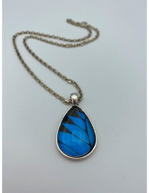 Blue Mountain Swallowtail Tear Drop Necklace