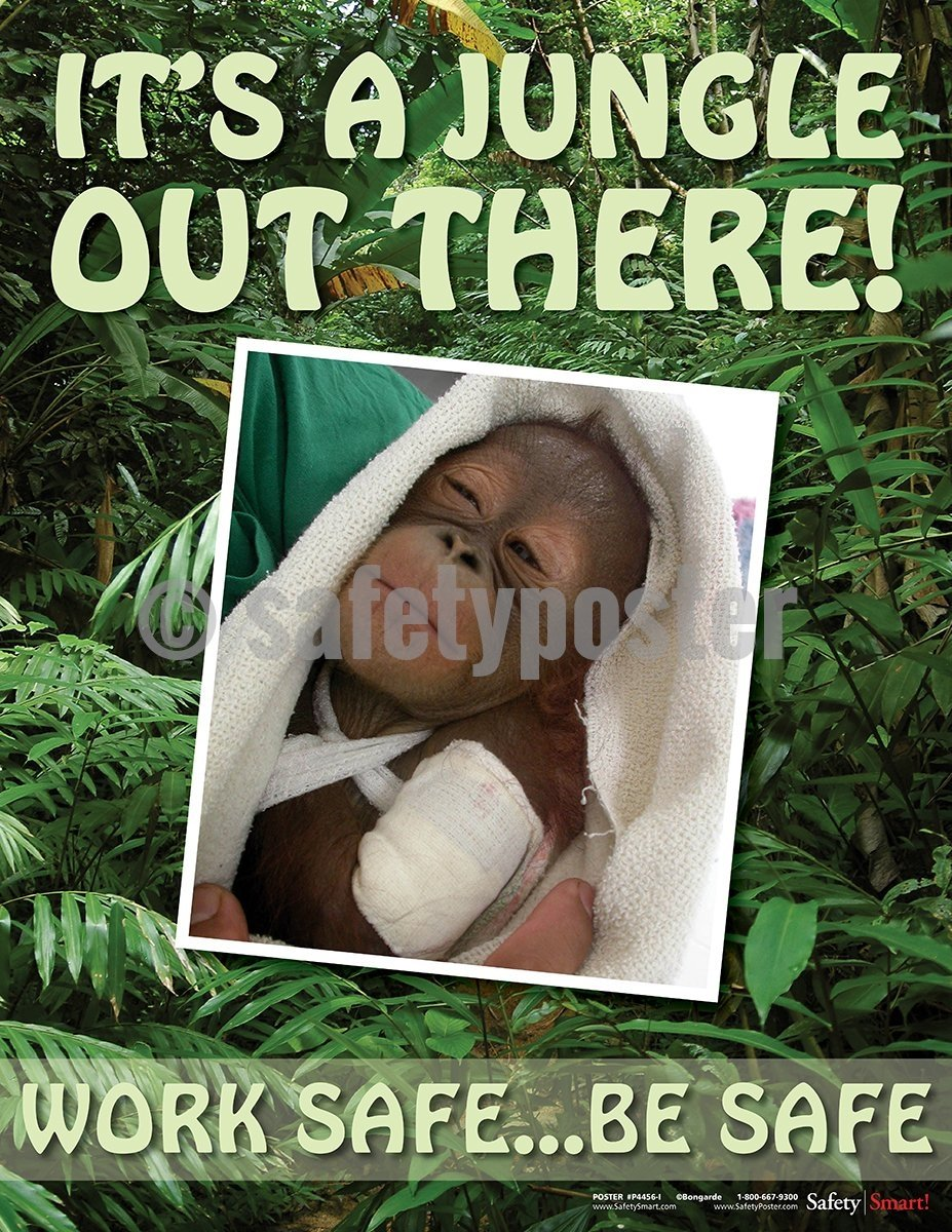 It's A Jungle Out There! - Safety Poster