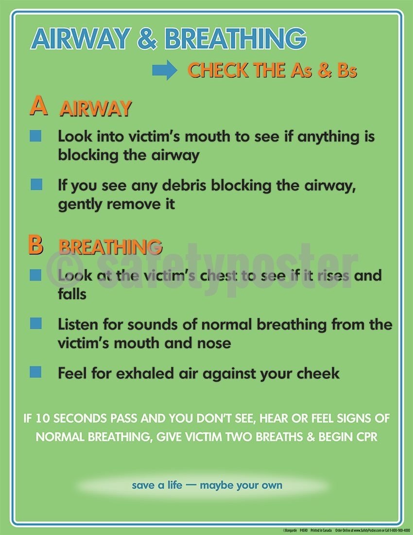 Airways & Breathing - Safety Poster General