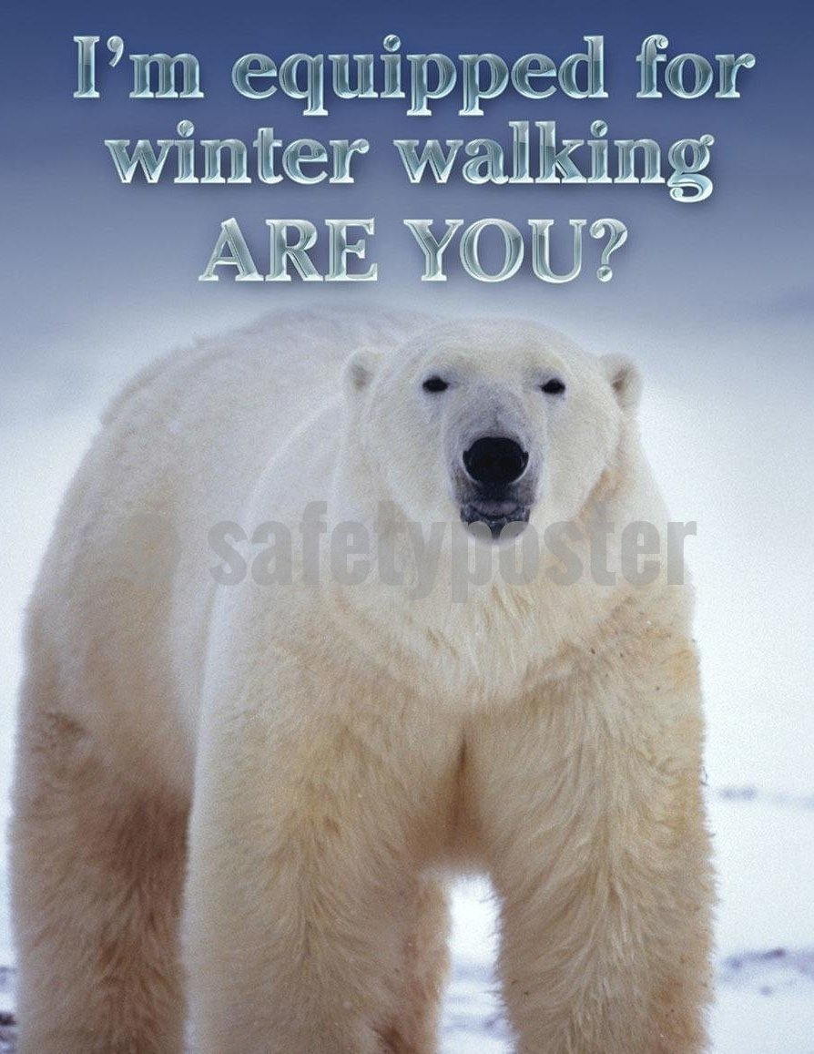 Safey Poster Winter Walking - safetyposter.com