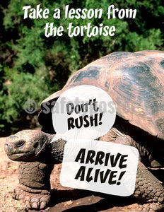 Safety Poster - Don't Rush! Arrive Alive! - safetyposter.com
