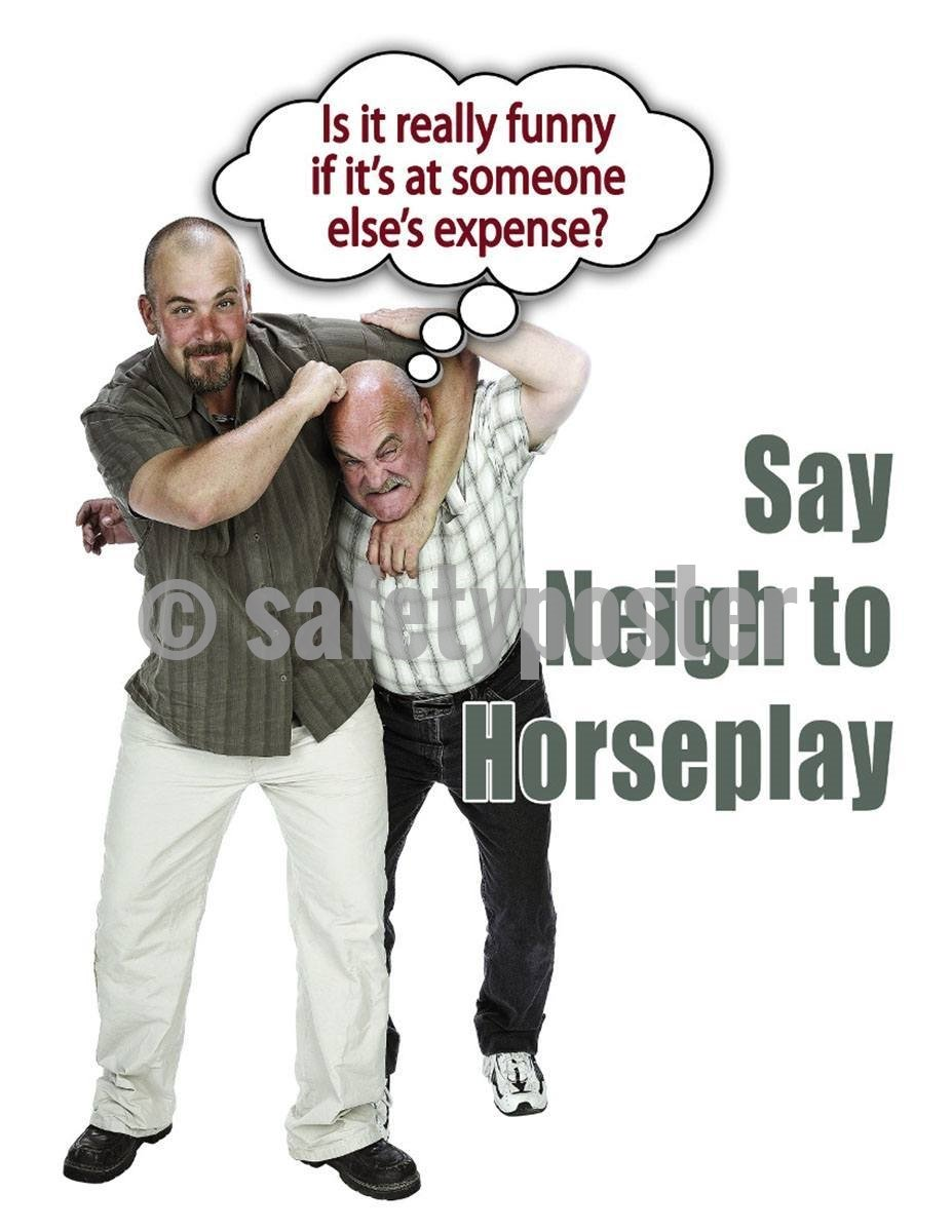 Safety Poster - Say Neigh To Horseplay - safetyposter.com