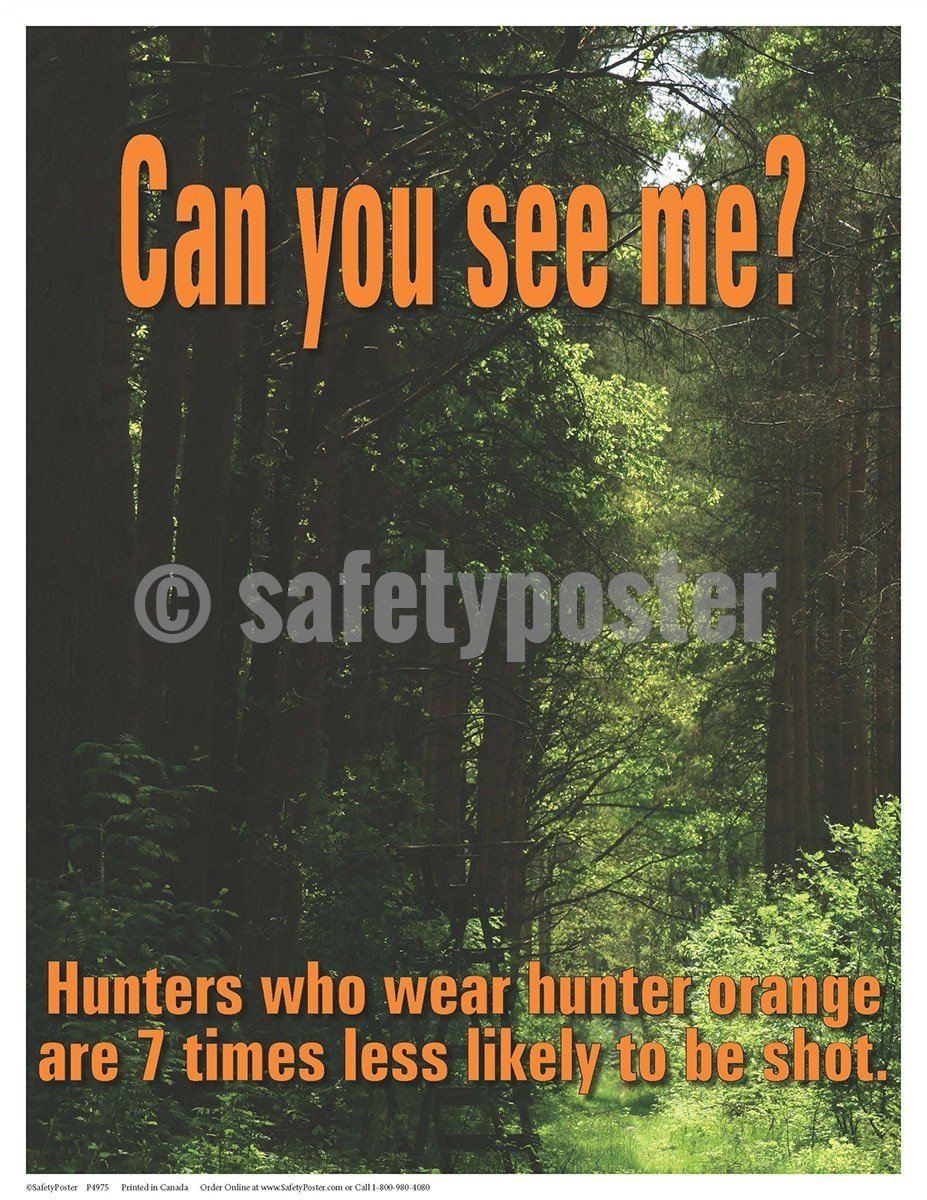 Safety Poster - Can You See Me? - safetyposter.com