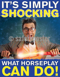 Safety Poster - It's Shocking What Horseplay Can Do - safetyposter.com