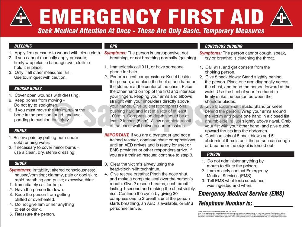 Emergency First Aid - Safety Poster General