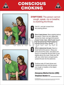 Conscious Choking - Safety Poster General