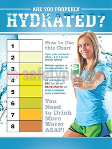 Are You Properly Hydrated - Safety Poster Seasonal