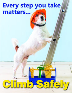Every Step You Take Matters Climb Safely - Safety Poster New Posters General