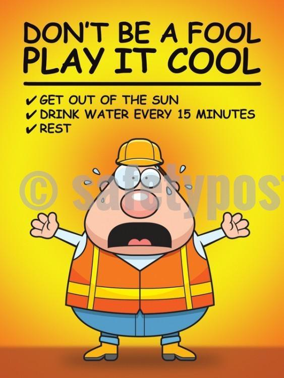 Dont Be A Fool Play It Cool - Safety Poster Seasonal New Posters