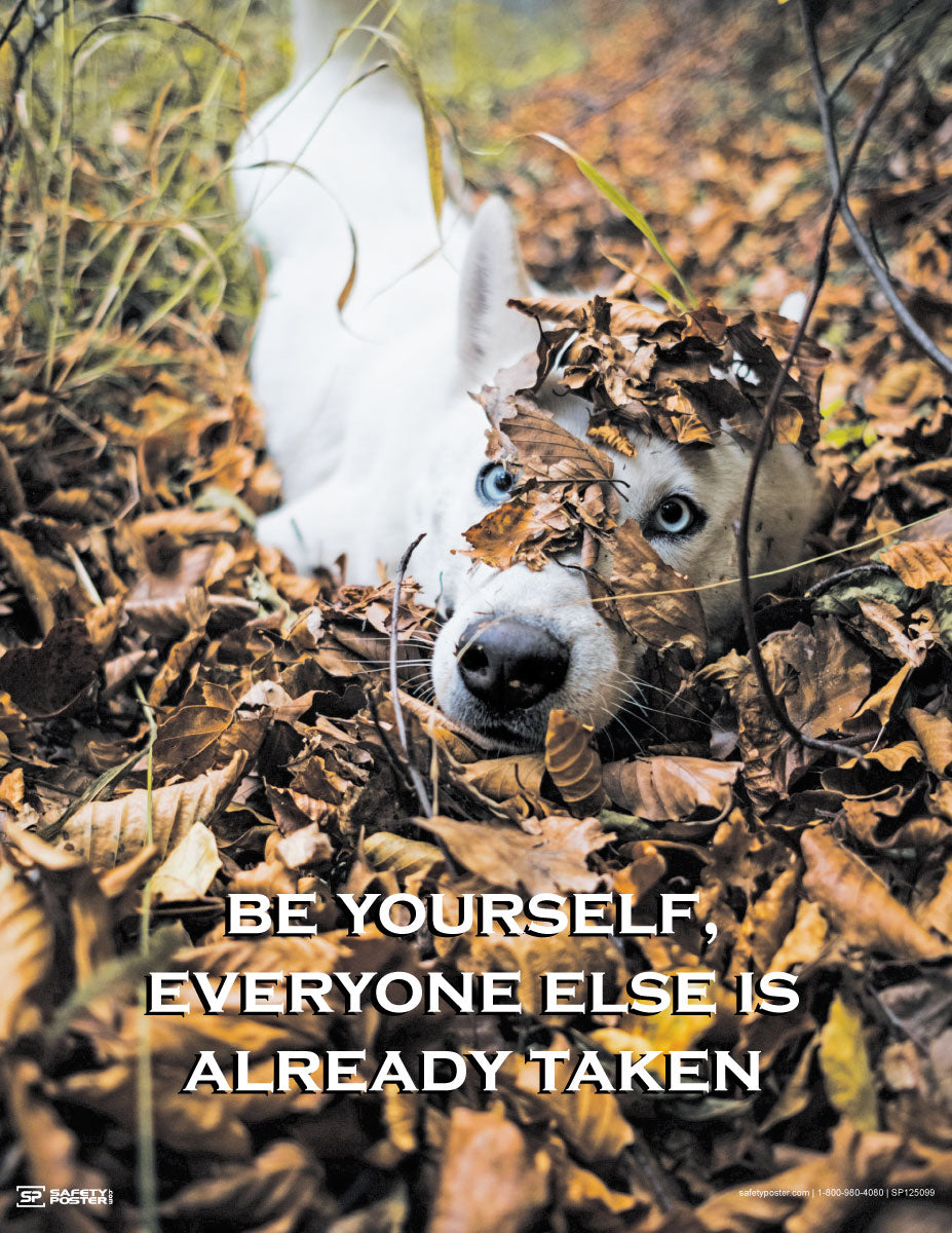 Be Yourself, Everyone Else Is Already Taken - Motivational Poster
