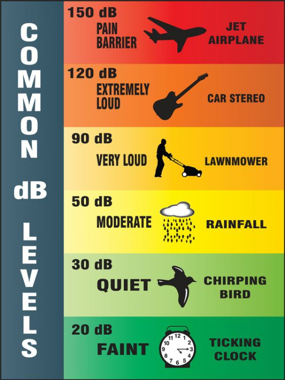 Common DB Levels - Safety Poster