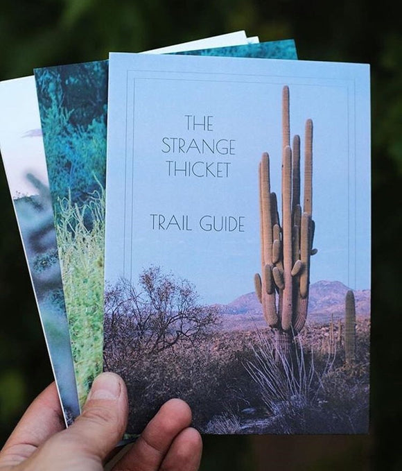 The Strange Thicket Field Guide