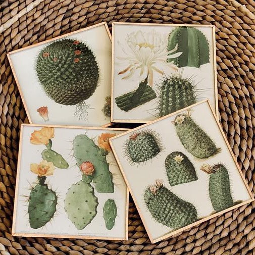 Coaster Sets By DDco Design