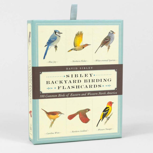 Sibley Backyard Birding Flashcard