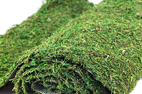 Instant Green Moss Mat, 18 in x 48 in(6 sq ft)