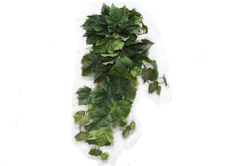 Green Deluxe English Ivy Bush (1 Piece)