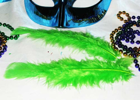 4 to 6 Inches Green Feather ( 1 Bag of Appx 100 Pcs)