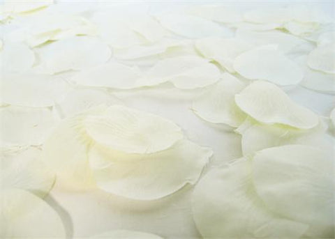 Silk Rose Petals Ivory (1728PCS)