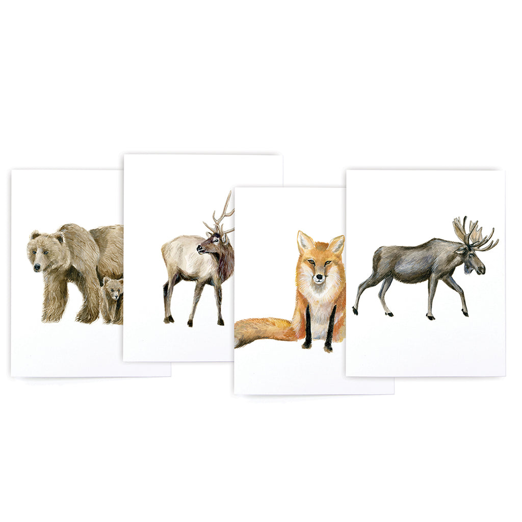 Mountain Animal Variety Card Set