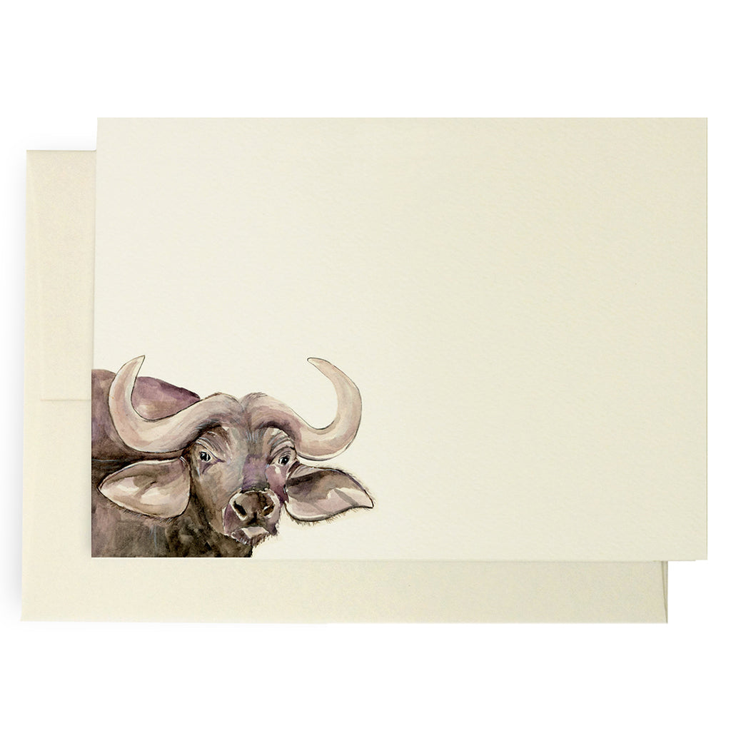 Safari Buffalo Note Cards