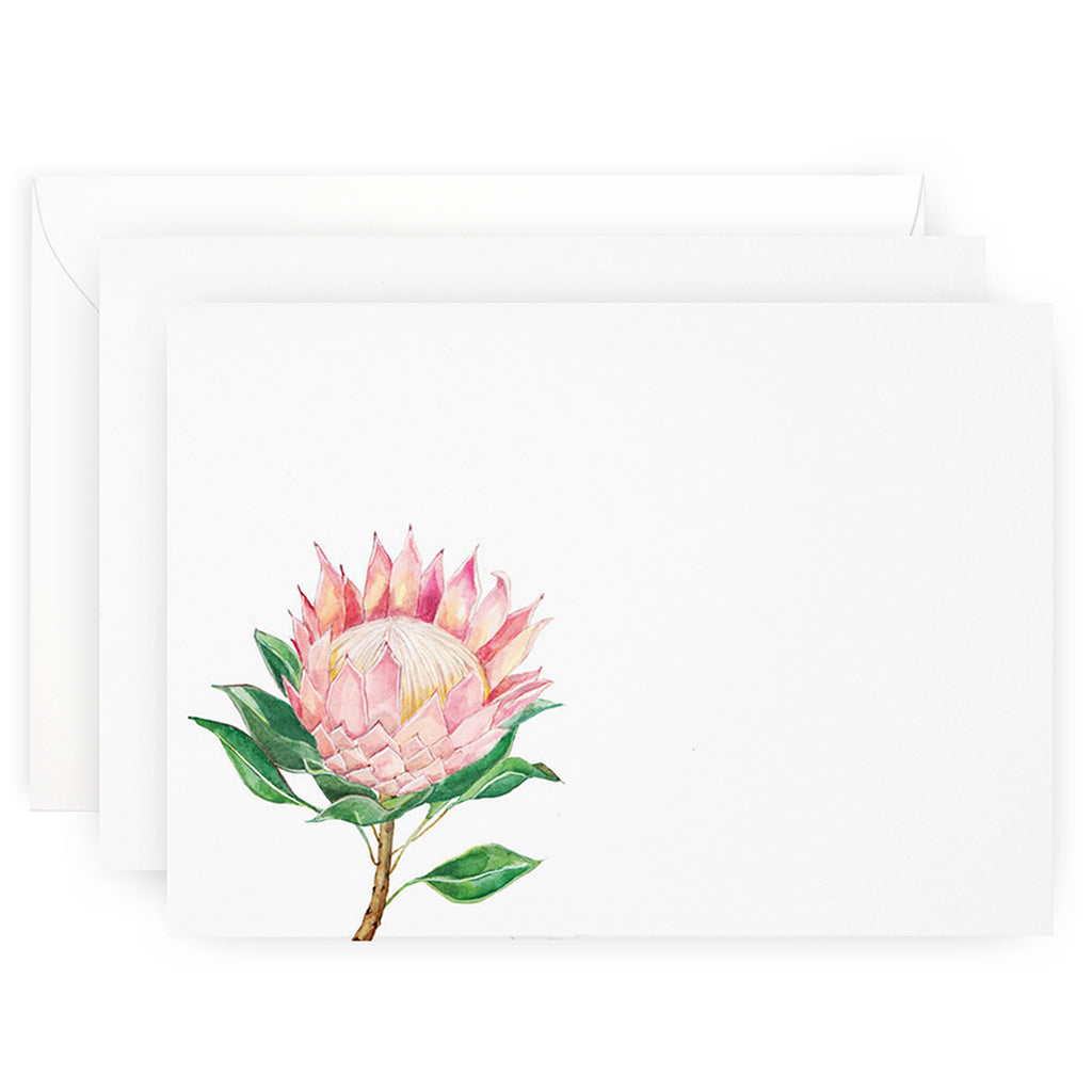 Protea Note Cards