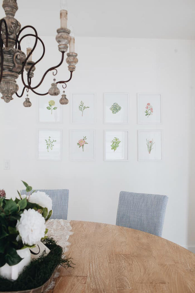 Set of 8 Herb and Floral Prints