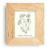 Botanical Floral Art Prints - Set of 4