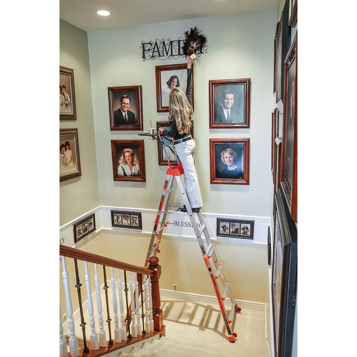 Select Step Ladder Type 1a