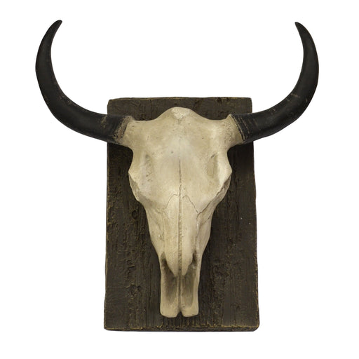 Steer Skull  Wall Mount