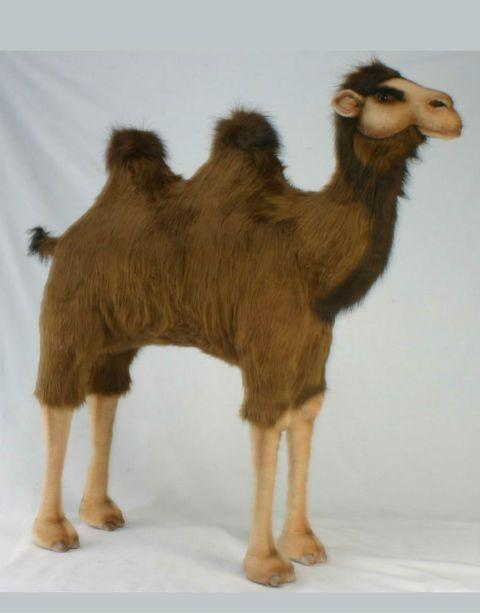 Ride-On Camel - UNQFurniture