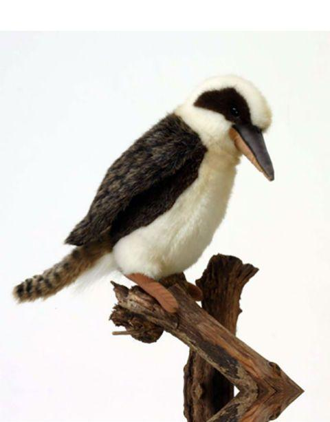 "Kookabura 8"" - UNQFurniture"