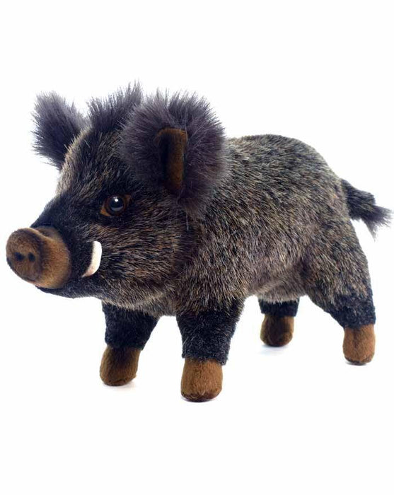 "Baby Boar 11.5"" - UNQFurniture"