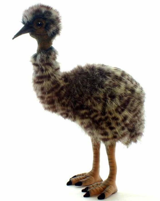 "Baby Emu 13"" - UNQFurniture"