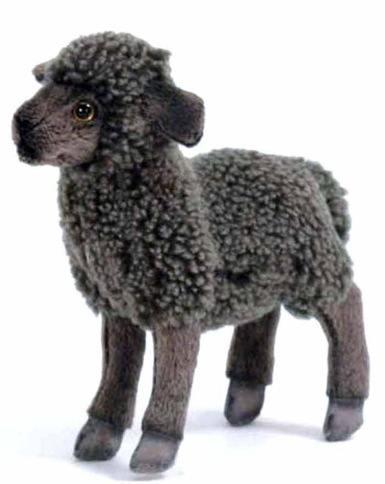 "Black Sheep Kid 12"" - UNQFurniture"
