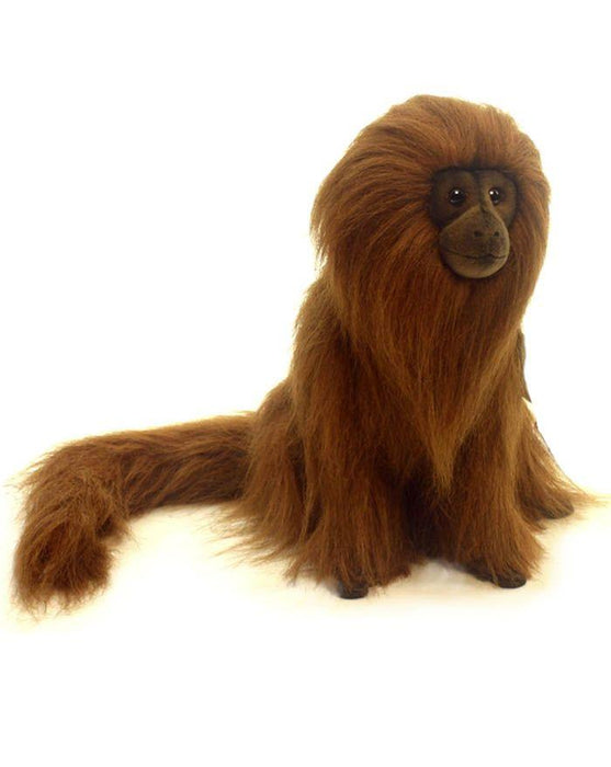 Golden Lion Tamarin 12'' - UNQFurniture