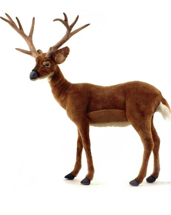"Deer, White Tailed 30""L X 42''H - UNQFurniture"