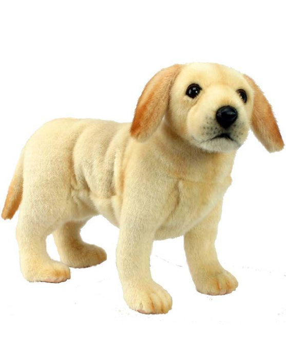 Labrador Puppy 14'' L - UNQFurniture